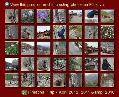 Himachal Trip - April 2012, 2011 & 2010 - View this group's most interesting photos on Flickriver