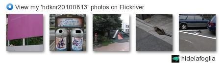 hidelafoglia - View my 'hdknr20100813' photos on Flickriver